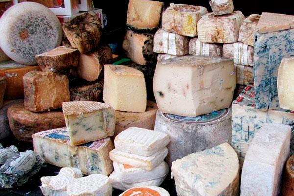 Изготовление деликатесных сыров по французским рецептам стало трендом на Смоленщине