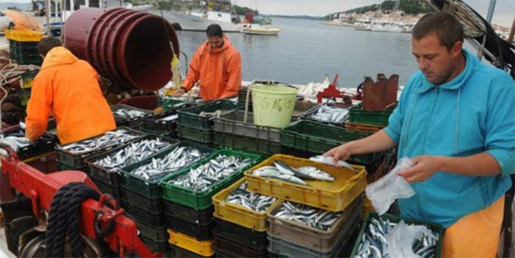 Марокко и Европейский союз подписали новое соглашение о рыболовстве