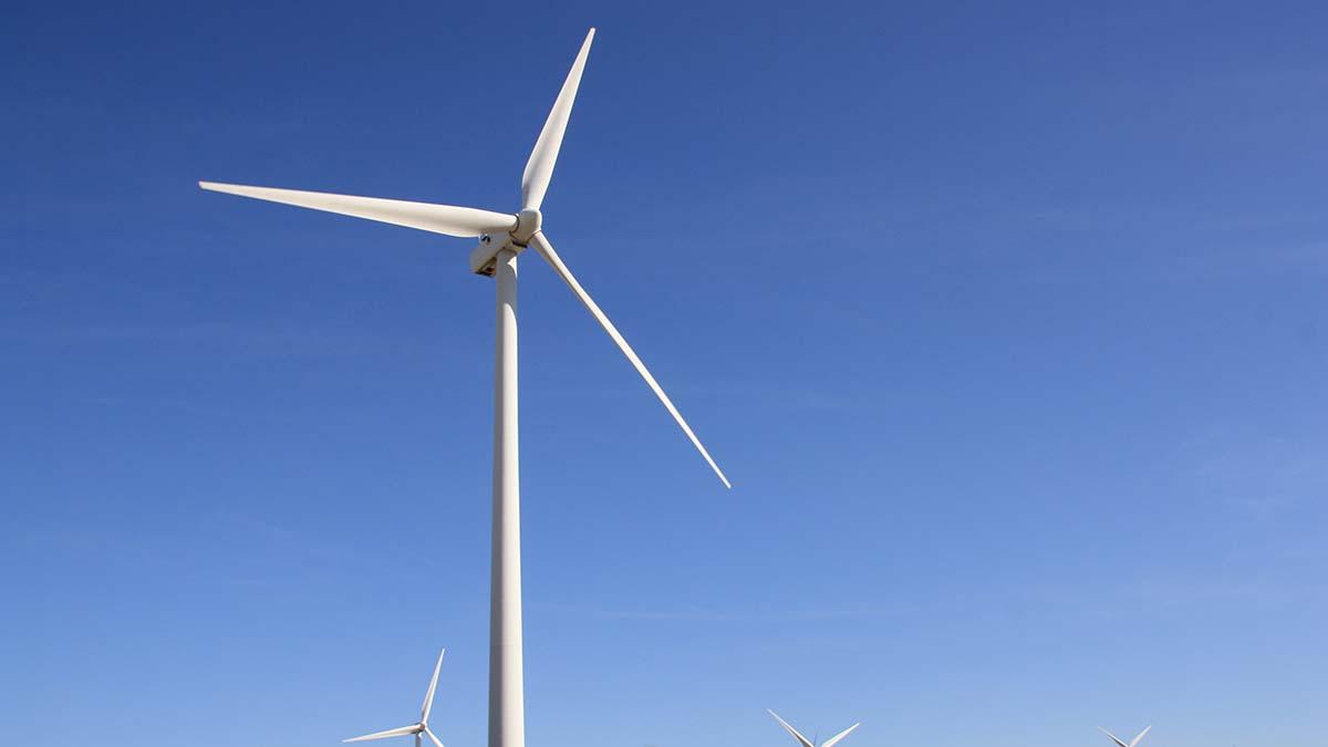Новая ветряная электростанция в Польше