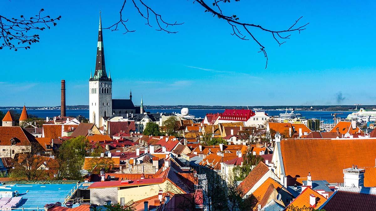 Арендовать жилье в Таллинне стало дешевле