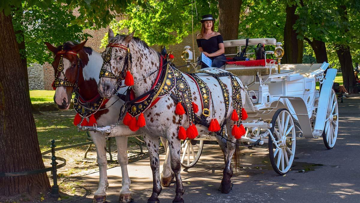 Представители туриндустрии подали в суд на правительство Польши