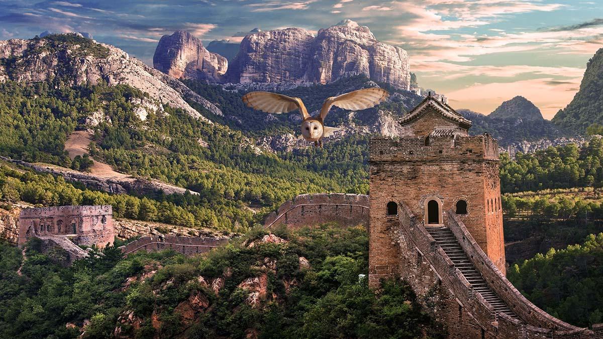 Экономика Китая выросла на фоне мирового спада