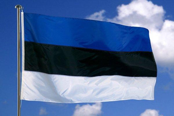 Эстонские власти намерены карать за незнание языка огромными штрафами