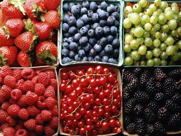 Украинцы могли бы хорошо заработать на ягодах и фруктах, но вмешиваются традиции